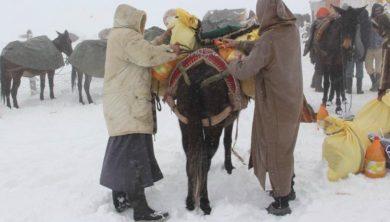 الثلوج في المغرب