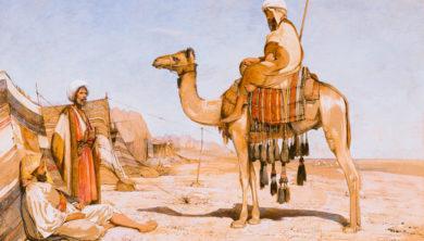 عائشة الشنا