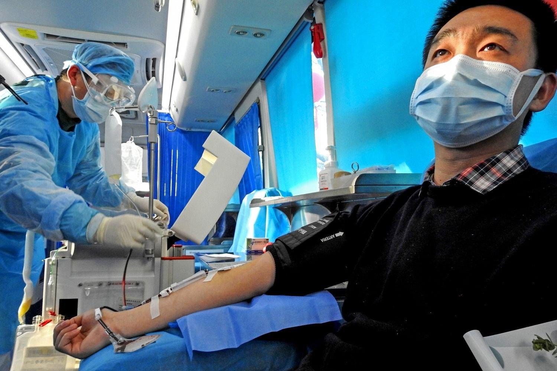 بلازما الدم كورونا