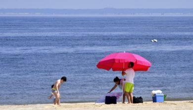 كورونا - العطلة الصيفية
