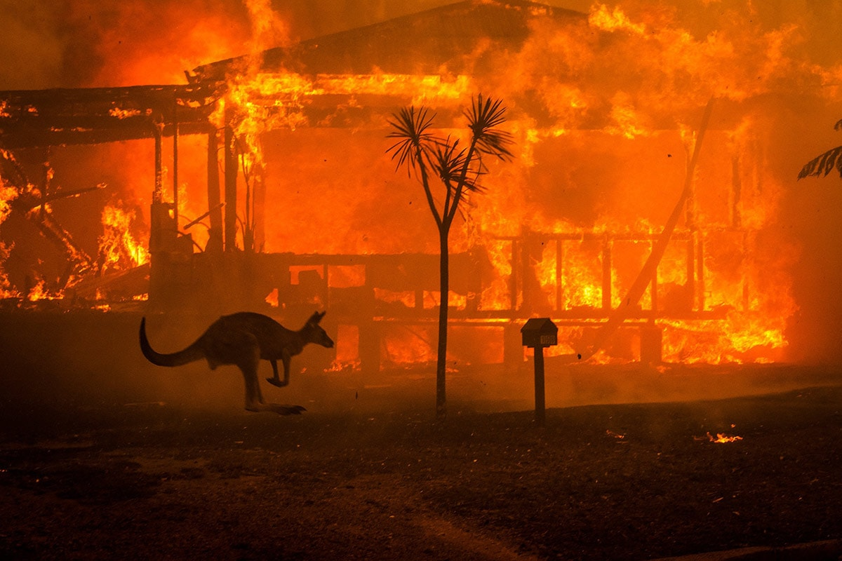 حريق استراليا