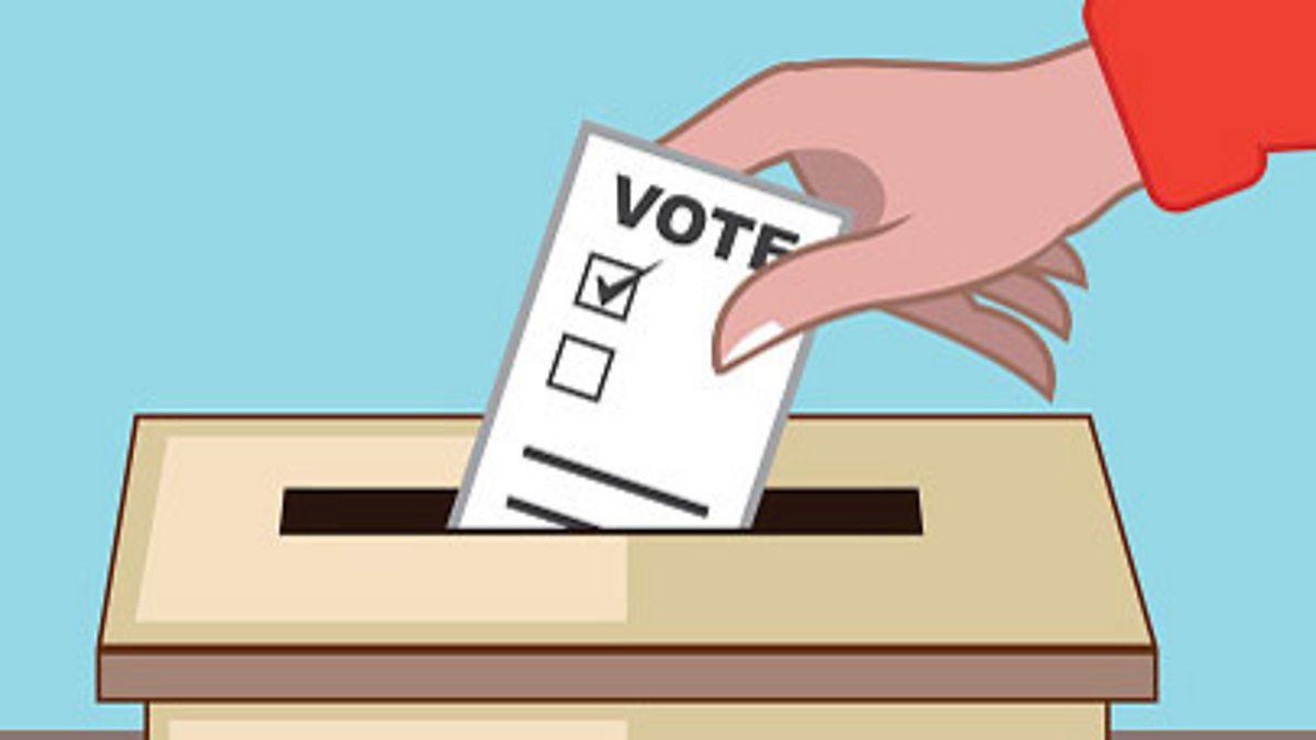 التصويت الإجباري